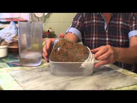 Хлеб и хлебцы - рецепты с фото выпечки домашнего хлеба