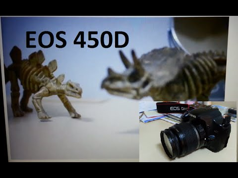 How to record a video with Canon 450D 1000D 40D 50D 5D Mark II DSLR