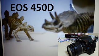 How to record a video with Canon 450D 1000D 40D 50D 5D Mark II DSLR(You can search for