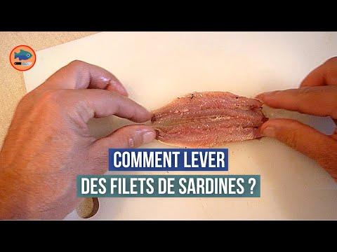 Pr paration de filets de sardines youtube - Comment cuisiner des filets de sardines ...
