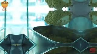 مطعم غزة فلافل في اسطنبول يقدم لكم اطيب المأكولات الشعبية الفلسطينة