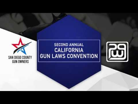 2018 California Gun Laws Convention - Activist Panel