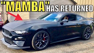 WHY it Took So LONG to FIX my 2018 Mustang GT! (Black Mamba Returns)