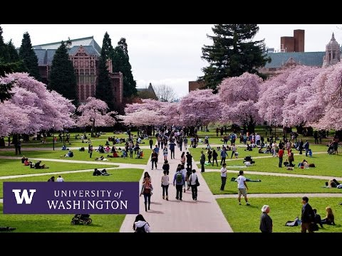 University Of Washington Seattle Campus Tour Youtube