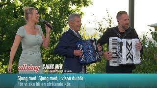 Allsångsprogramledarna – Sjung med (Live