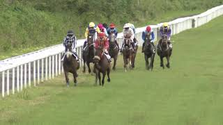 Vidéo de la course PMU PRIX DE L'ANSE TRABAUD