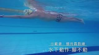 魚式游泳中部地區~楊尚霖教練 用運核心游泳(腳完全不動 保持不下沉)