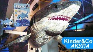 лего Акула из Микро блоков Морские поиски. Микро самоделка