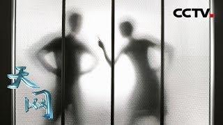 《天网》 虚情假意:婚外情人忽然痛下杀手 伪造现场破绽百出 | CCTV社会与法