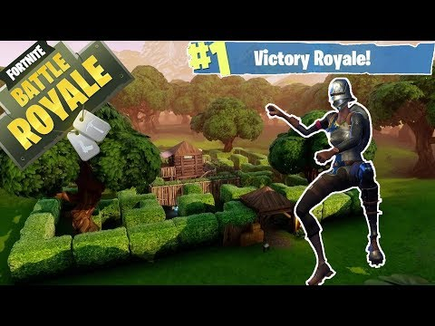 Fortnite   RIDIN' THE PONY ALL THE WAY TO VICTORY!