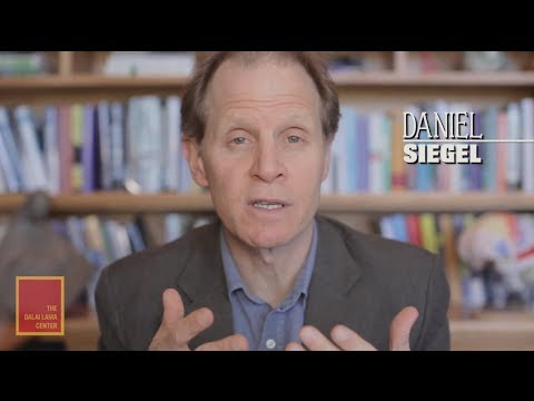 Daniel Siegel - The Teenage Brain