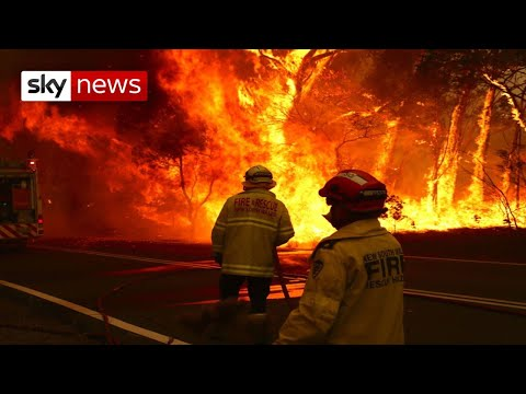 Australia bushfires: New South Wales declares state of emergency