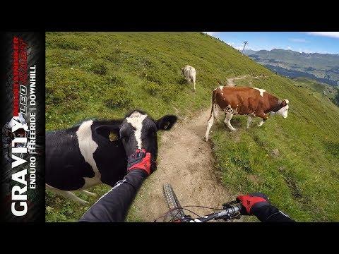 Lenzerheide MTB Trail - 612 Westside Tour Bis Churwalden   Leo Kast