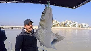 Balık Bereketi Devam Ediyor / Gün Ortasında At-Çek Levrek Avı