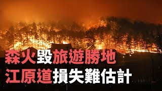 森火毀旅遊勝地 江原道損失難估計【央廣新聞】