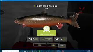 Русская рыбалка 4. Как не ломать палки, выбрать кату и сэкономить на ремонте