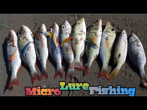 MICRO LURE FISHING | TECHNIQUES AND SET UP
