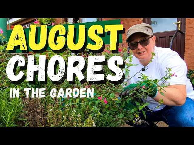 August chores in my Scottish garden