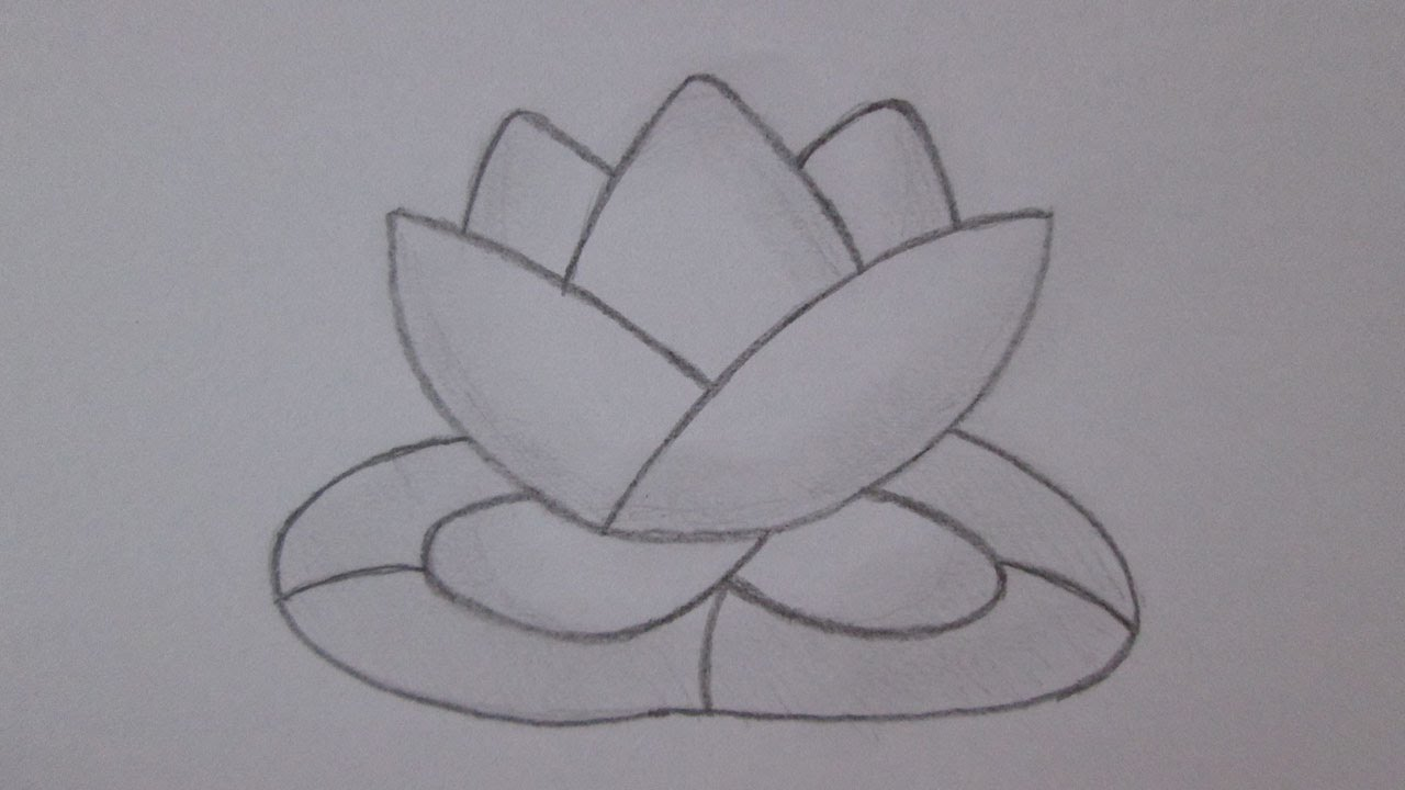 How To Draw A Lotus Flower Youtube