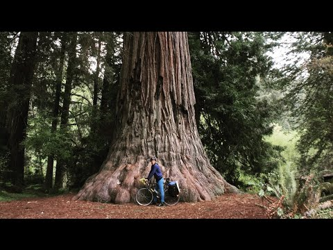 Bicycle Touring The Pacific Coast Of The U.S.A. - Ep #36