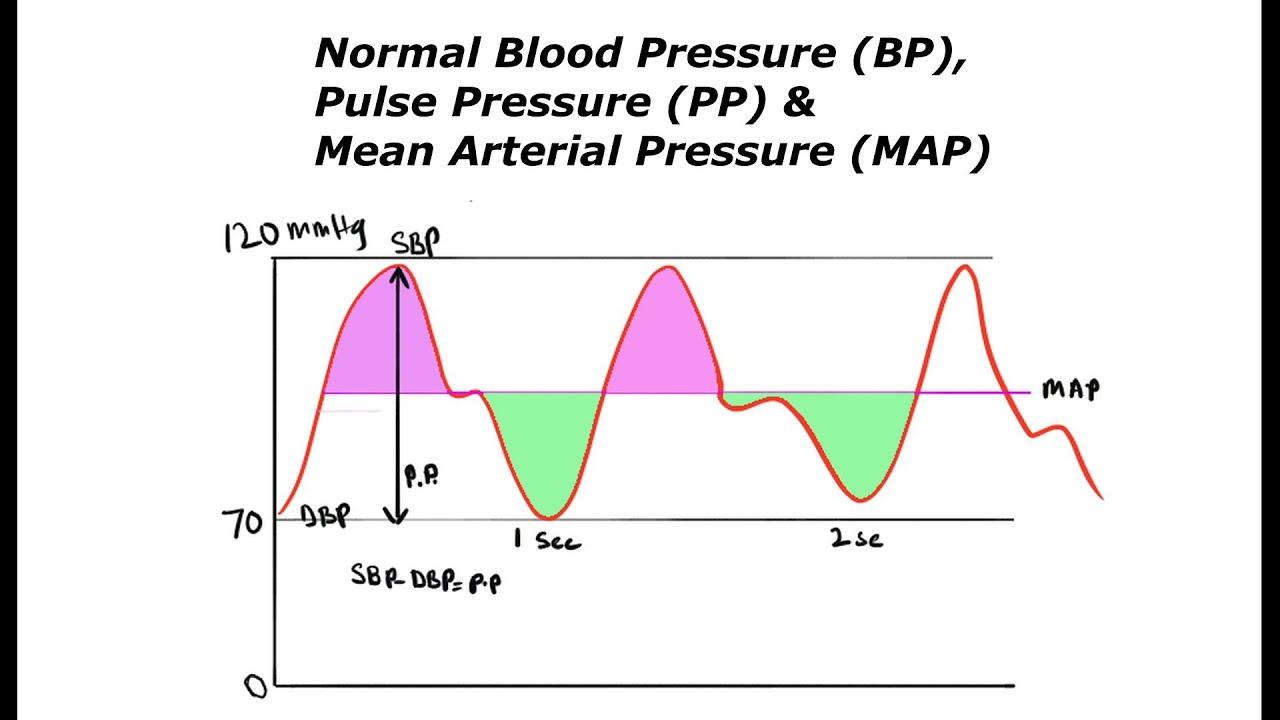 Normal Blood Pressure Bp Calculation Of Pulse Pressure Pp Mean Arterial Pressure Map Youtube