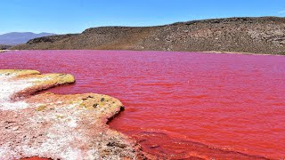 Blood Red Lakes and Other Geothermal Psychological Thrillers/W…