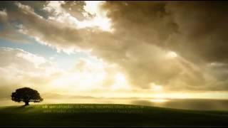 Acalma o Meu Coração | Anderson Freire
