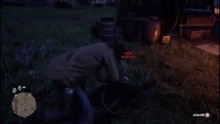 Griefer Roping Red Dead Redemption Online