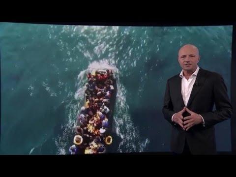 Een opmerkelijke oproep van de Verenigde Naties - RTL Z NIEUWS