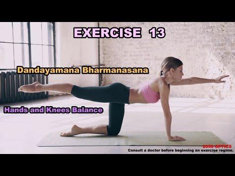 EXERCISE 13: Hands and Knees Balance (Dandayamana Bharmanasana)