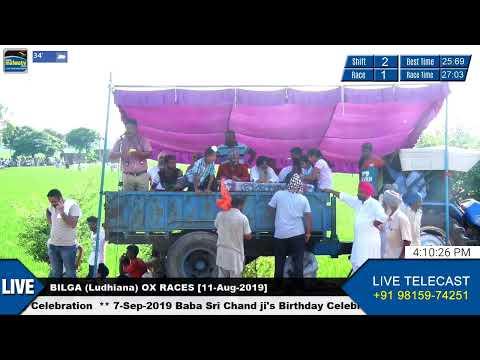 SHIFT 1 🔴 BILGA (Ludhiana) 🔴 OX RACES - ਬਲਦਾਂ ਦੀਆਂ ਦੌੜਾਂ [11th-Aug-2019]