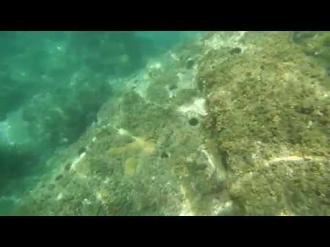 Snorkeling at Maro (Nerja), Spain