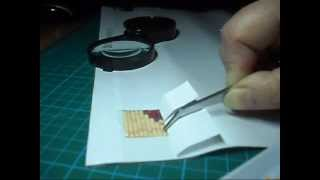 видео Алмазная мозаика
