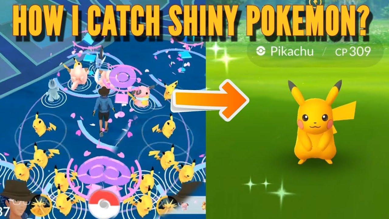 Finding 6th Shiny Pikachu in Pokemon Go Park! Pikachu ...