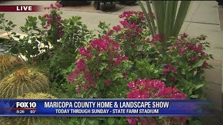Cory's Corner: Maricopa County Home and Landscape Show