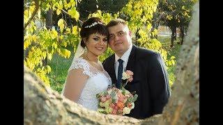 Свадьба Дмитрия и Натальи-зал 2 часть