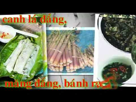 NGOC LAC YEU THUONG