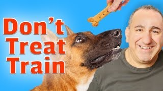 Dog Training Without The Use Of Treats - How to train dogs to listen without treats