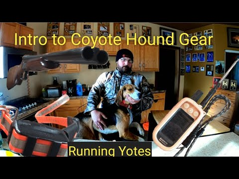 Intro To Coyote Hound Gear
