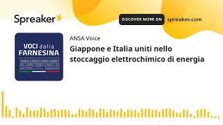 Giappone e Italia uniti nello stoccaggio elettrochimico di energia