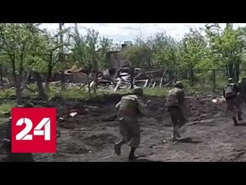 В Белоруссии задержаны десятки боевиков, готовивших картофельную революцию