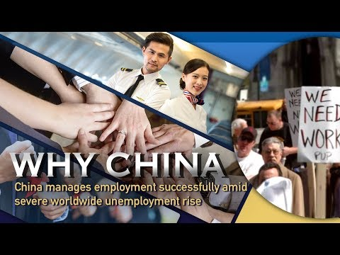 China's Employment Management Amid Global Rise In Unemployment