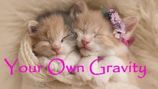 Your Own Gravity ~ Chill out mix ~  Easy Listening, Lo-Fi, Lounge ~ Listen and relax