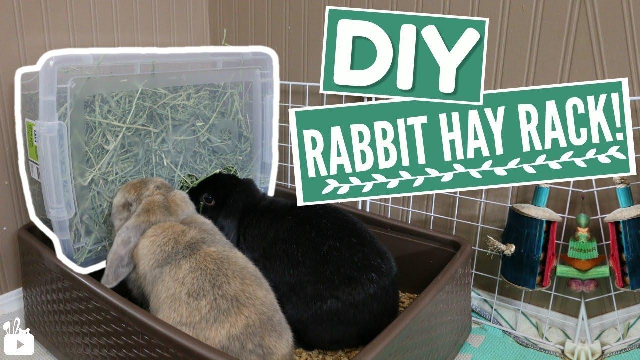 diy rabbit hay box small pet hay rack