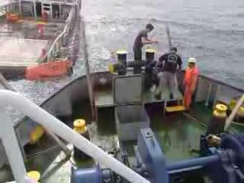 """Redwise ship delivery. Boodschappen doen op zee. """"Al A'Ali-1"""" ontvangt filters van de """"Shark 52"""" ."""