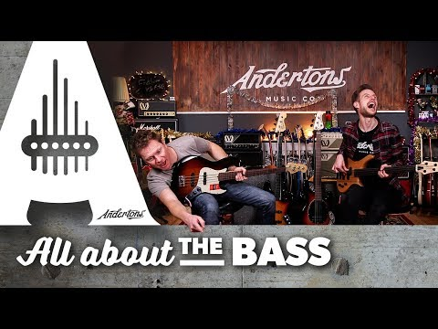 Fretless Basses - The Cheapest Vs Most Expensive In The Store!
