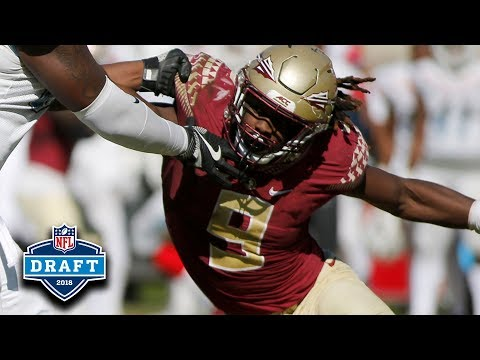 Josh Sweat NFL Draft Tape | FSU DE