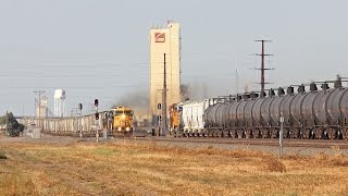 Foreign Power, officer specials and more on the BNSF Hereford Sub 10/6 and 10/8/14 HD