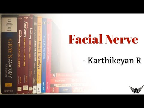 Cranial Nerve 7 - Facial Nerve - CN VII.