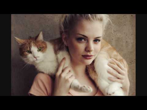 Are You Really Ready for a Cat - Cat Care Tips